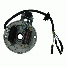 ALTERNATOR ATV 110 (2 CEWKI) NS150FMH-100008