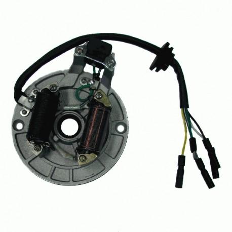 ALTERNATOR ATV 110 (2 CEWKI) NS150FMH-100008